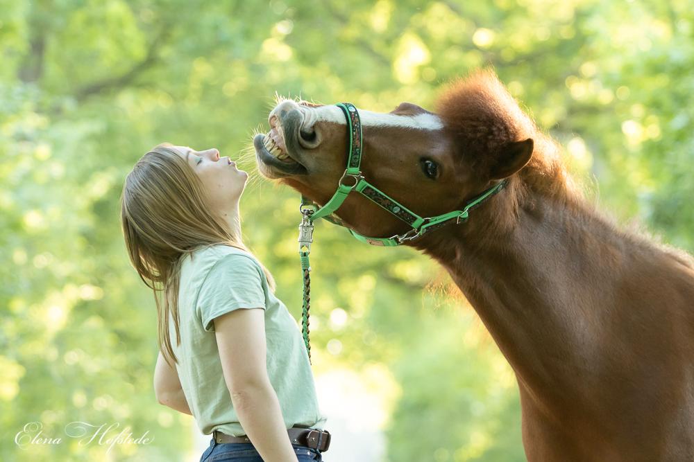 Dancing along with Horses – Sonderanfertigung